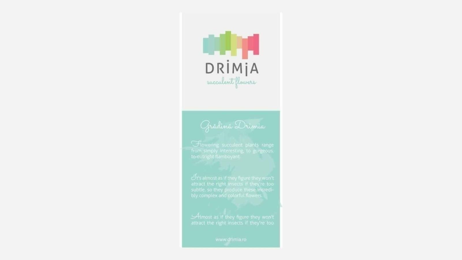 Drimia, branding identity